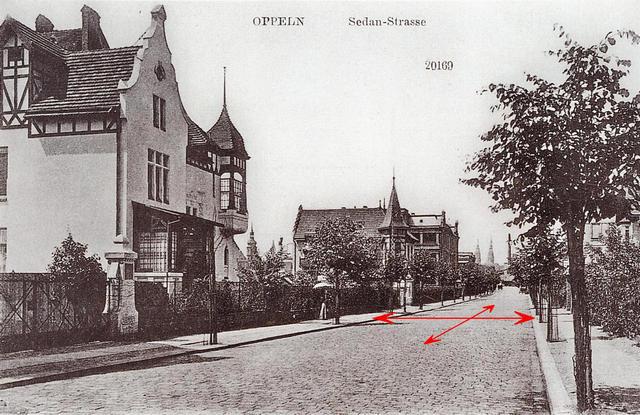 Widok willowej ulicy Grunwaldzkiej